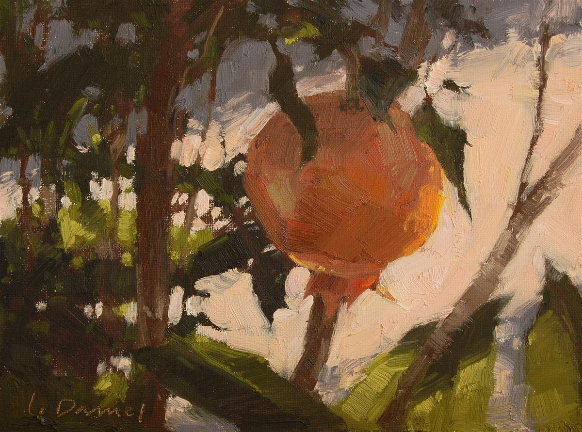 """Sacred Pomegranate"" original fine art by Laurel Daniel"