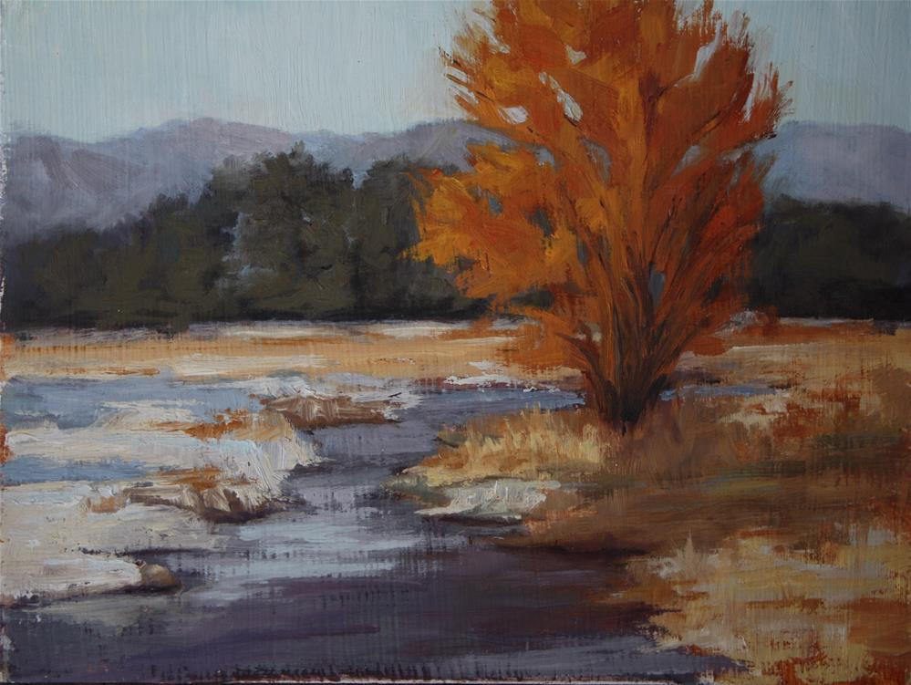 """Morning Thaw"" original fine art by Sheila Marie"