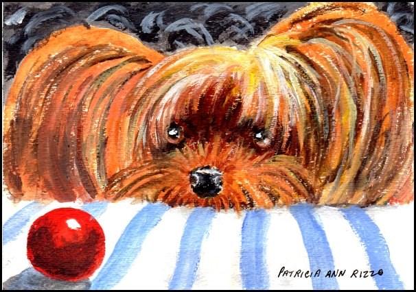 """""""The Lazy Yorkie"""" original fine art by Patricia Ann Rizzo"""