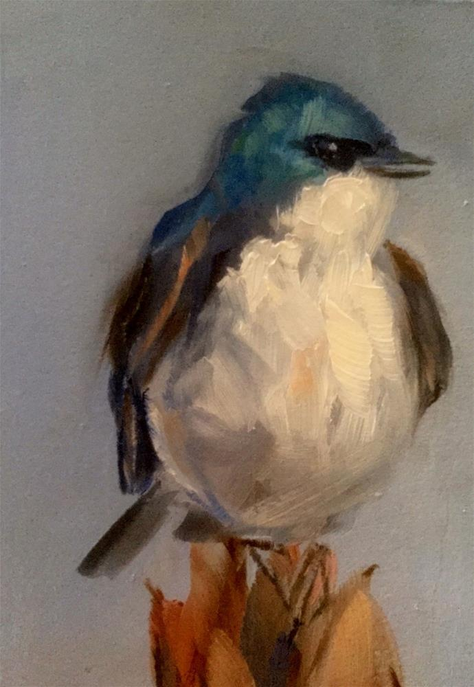 """Tree Swallow, Perched"" original fine art by Gary Bruton"