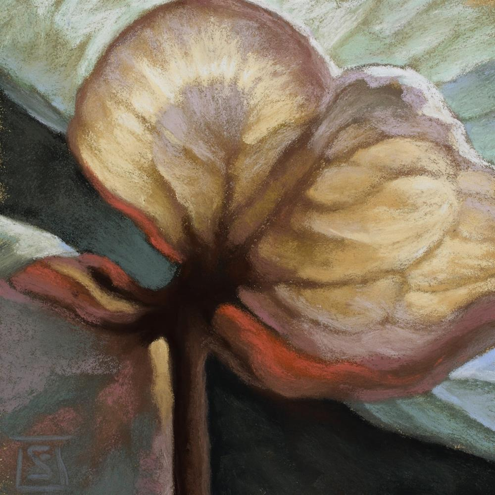 """Convergence Study 2"" original fine art by Sheila Evans"