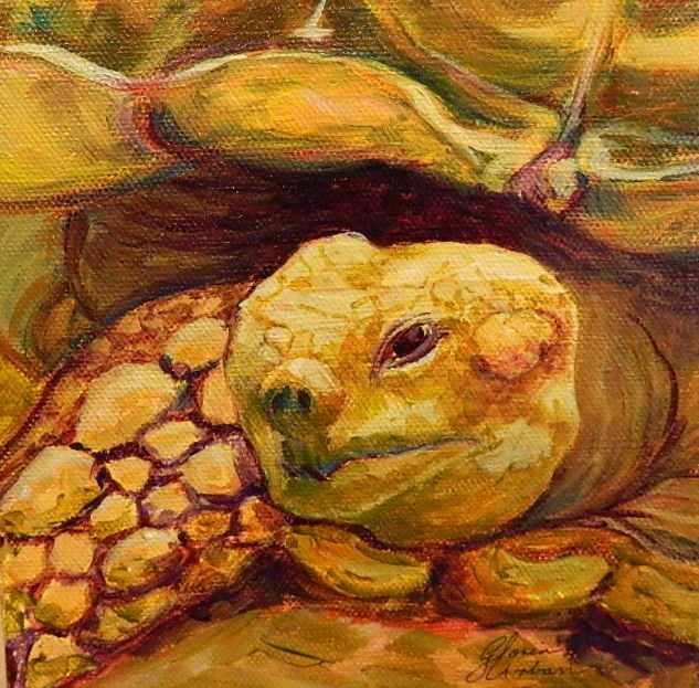 """Turtle #3"" original fine art by Gloria Urban"