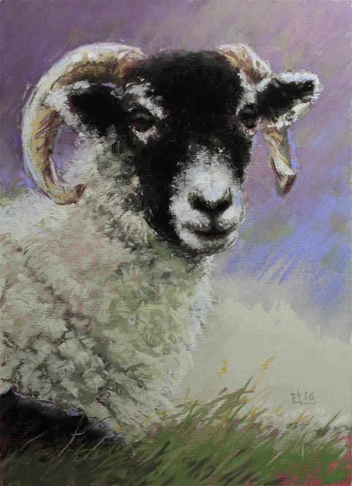 """A Restful Sheep"" original fine art by Emilia Leinonen"