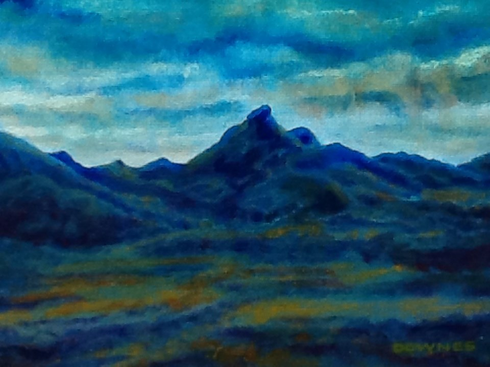 """109 MOUNT WARNING 31"" original fine art by Trevor Downes"