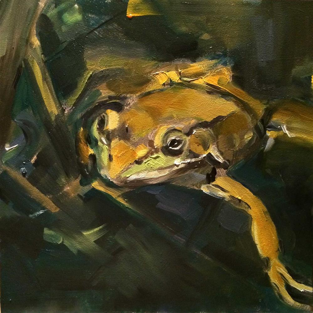 """""""frog"""" original fine art by Kim Smith"""