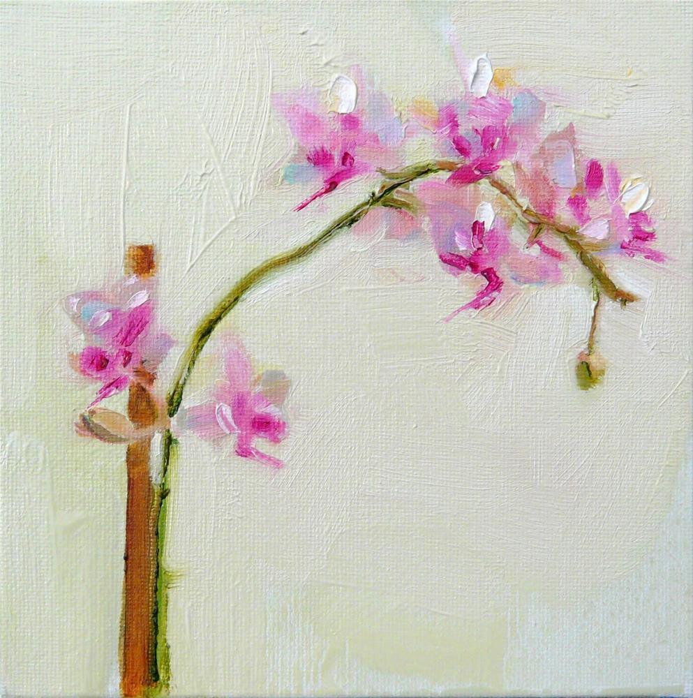 """Tiny Orchid Flowers,still life,oil on canvas,6x6,price$200"" original fine art by Joy Olney"