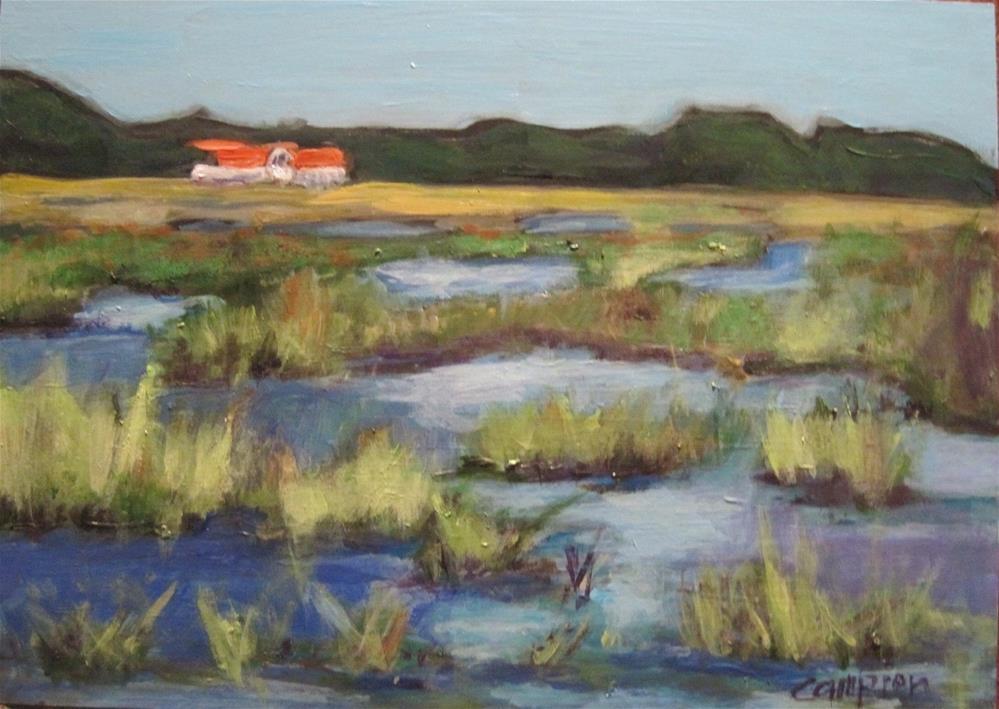 """210 Across the Marsh"" original fine art by Diane Campion"