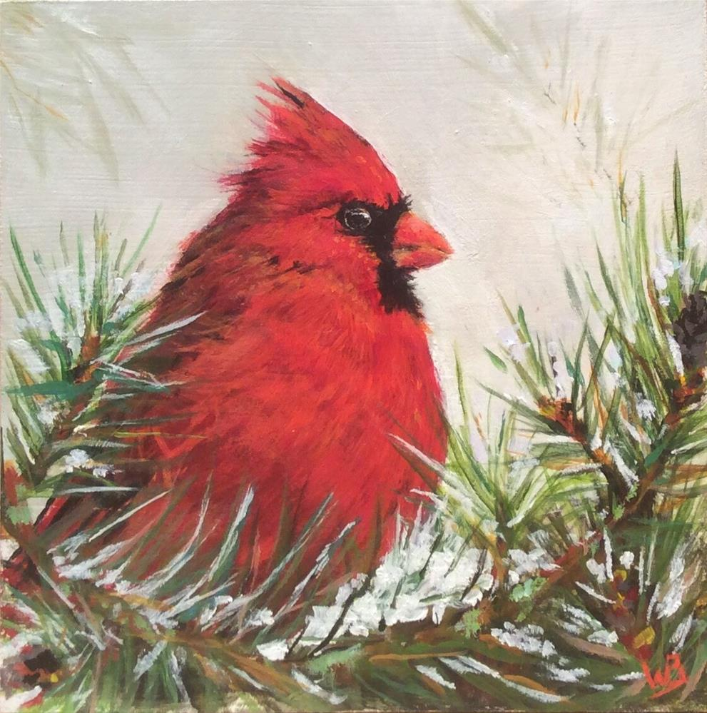 """Cardinal and Pine"" original fine art by wendy black"