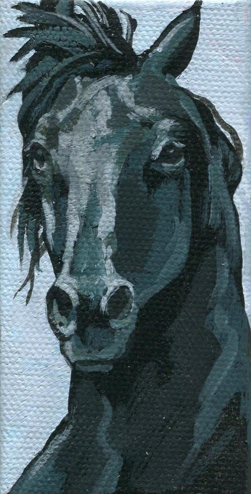 """Black Horse"" original fine art by Nadi Spencer"