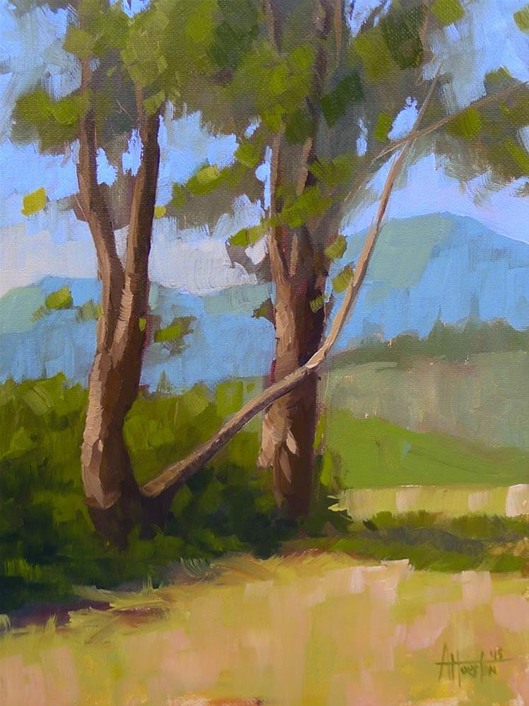 """Brasstown Valley Trees III"" original fine art by Adam Houston"