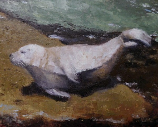 """Sunbathing Seal"" original fine art by Lori L. Lamb"