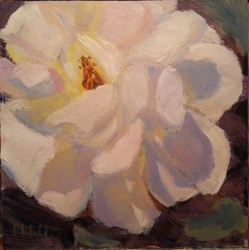 """Rose Painting Original Oil Heidi Malott"" original fine art by Heidi Malott"