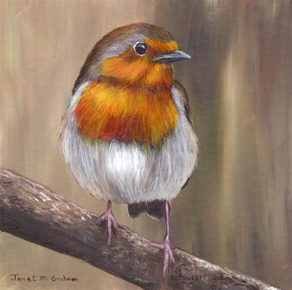 """Robin No 11"" original fine art by Janet Graham"