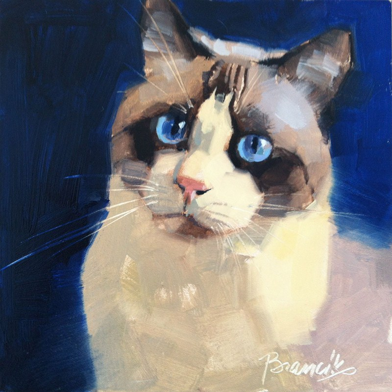 """Siamese Mix"" original fine art by Candace Brancik"