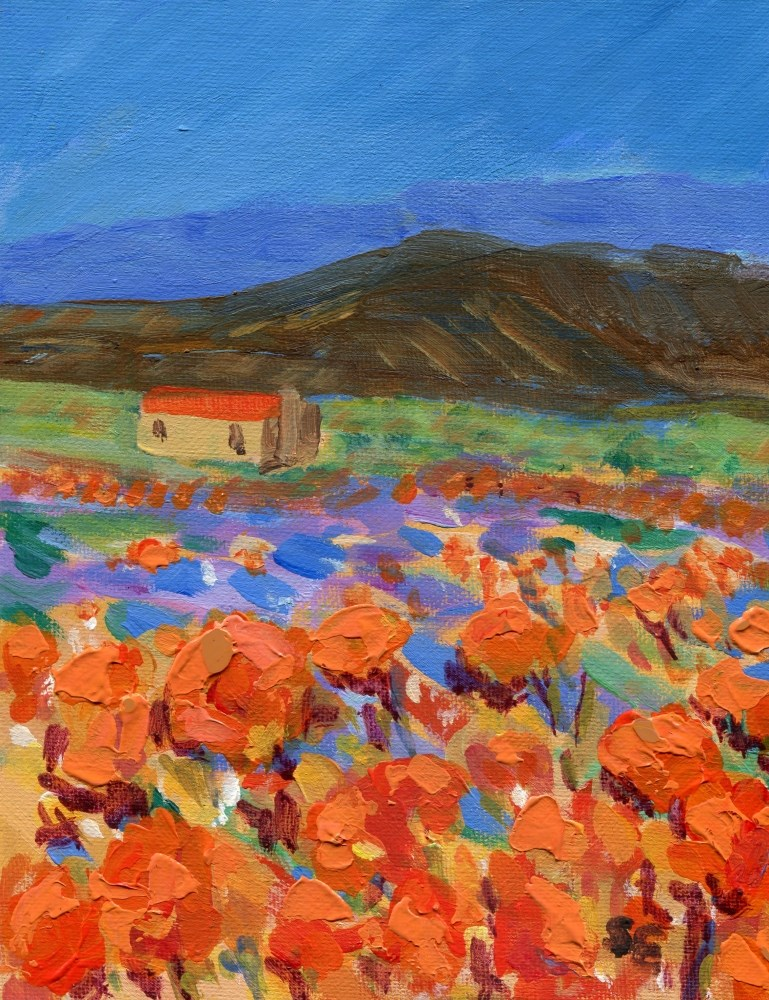 """California Poppies"" original fine art by Stanley Epperson"