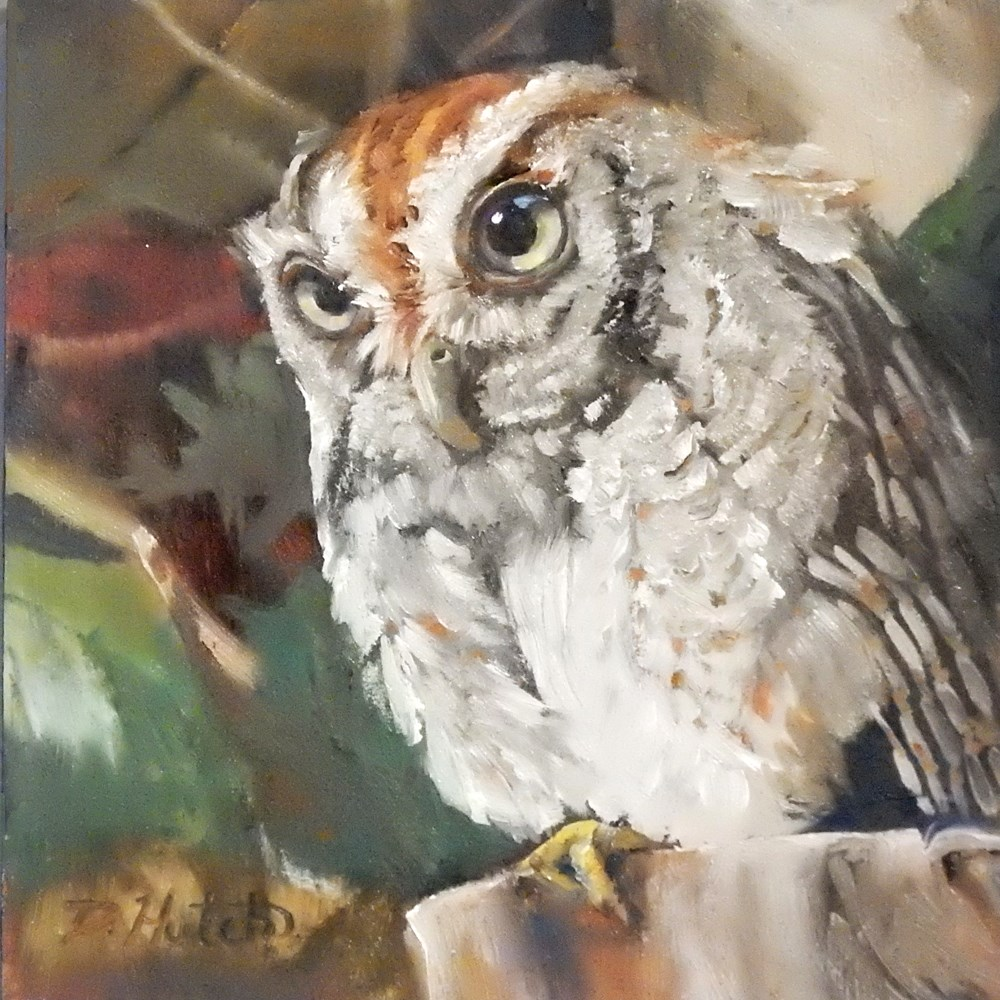 """Owl #1"" original fine art by Diane Hutchinson"