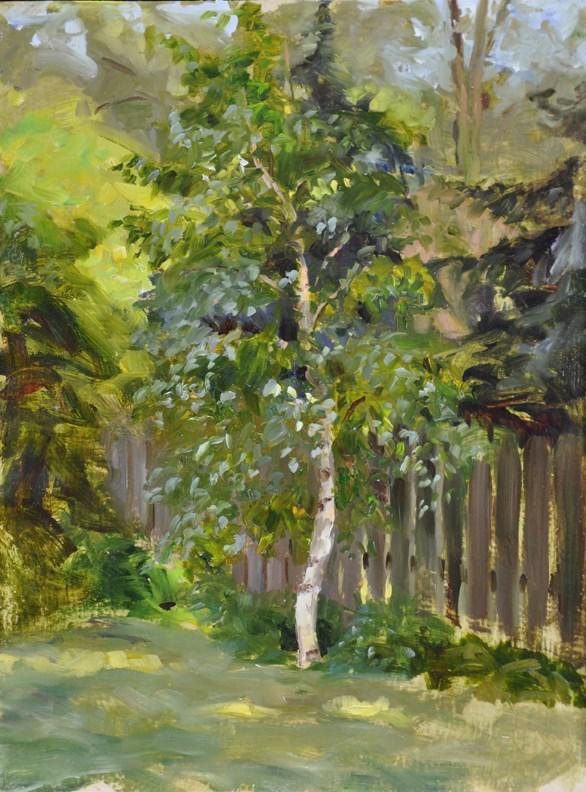 """Backyard Birch"" original fine art by Scott Harding"