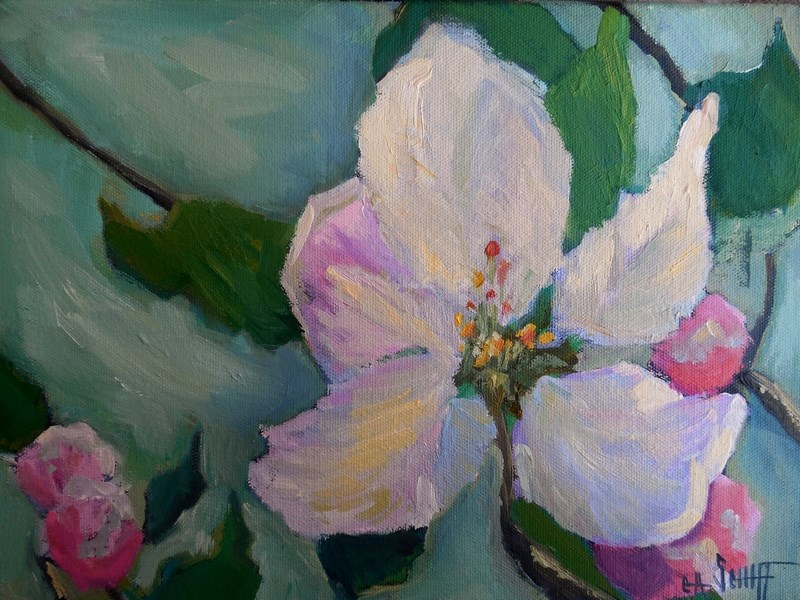 """Apple Blossom Painting, Small Oil Painting, Daily Painting, 9x12x.75 Flower Painting"" original fine art by Carol Schiff"