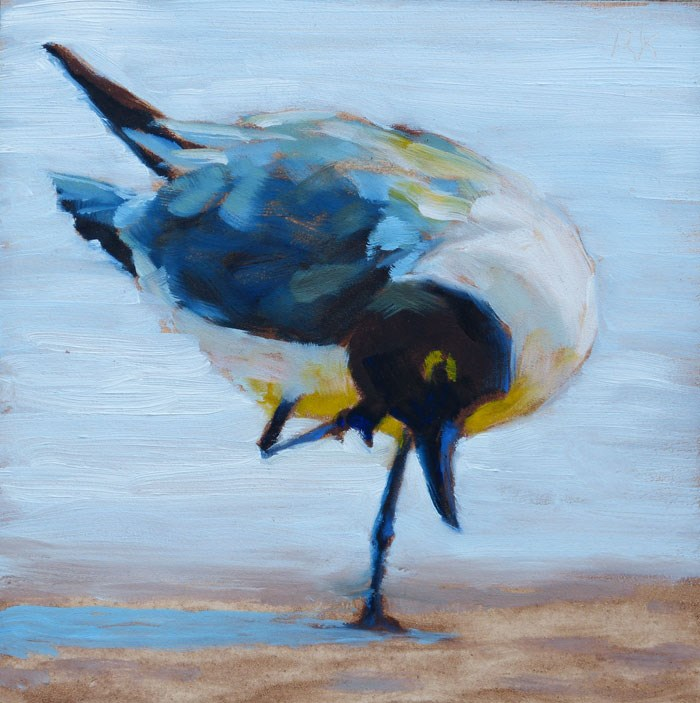"""Itchy Gull"" original fine art by Rita Kirkman"