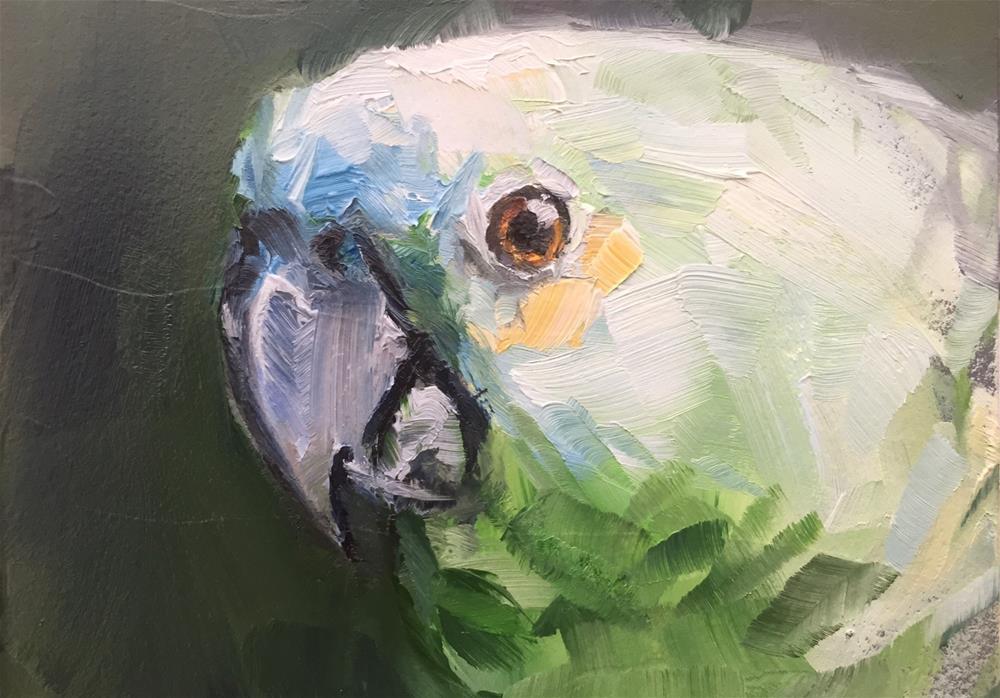 """Blue Fronted Amazon Portrait"" original fine art by Gary Bruton"