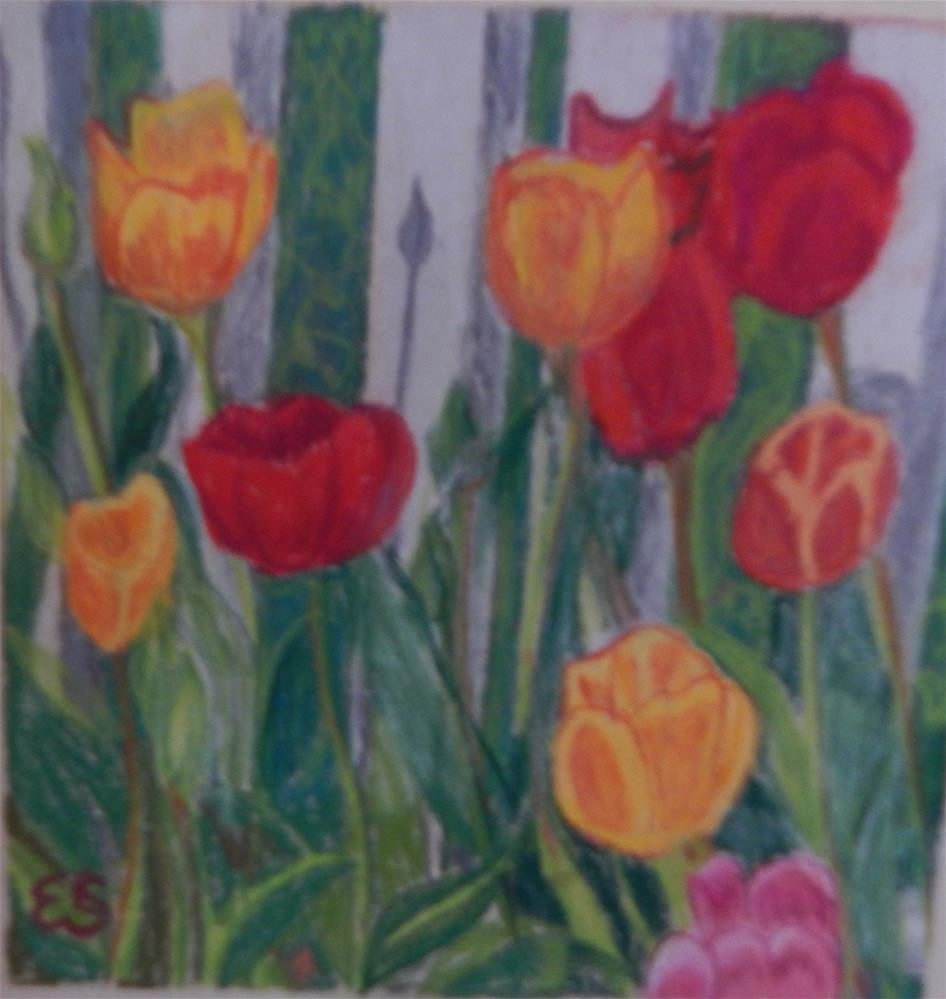 """Tulips and Picket Fence"" original fine art by Elaine Shortall"