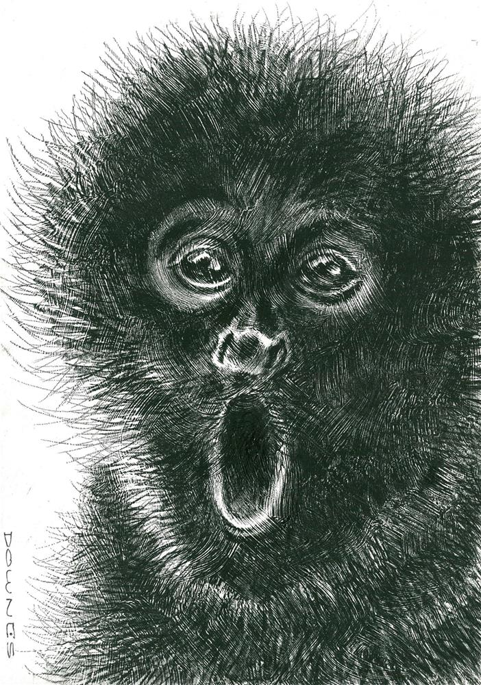 """318 PERUVIAN SPIDER MONKEY"" original fine art by Trevor Downes"