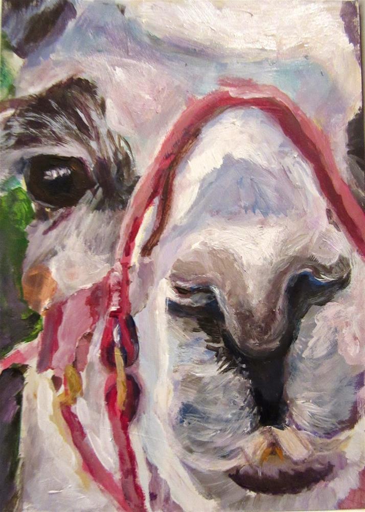 """519 Lunch With Llamas"" original fine art by Diane Campion"