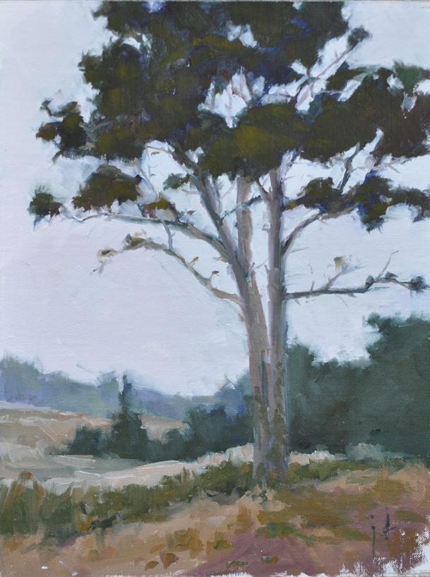 """Point Lobos Studies 3 and 4"" original fine art by Julie Davis"