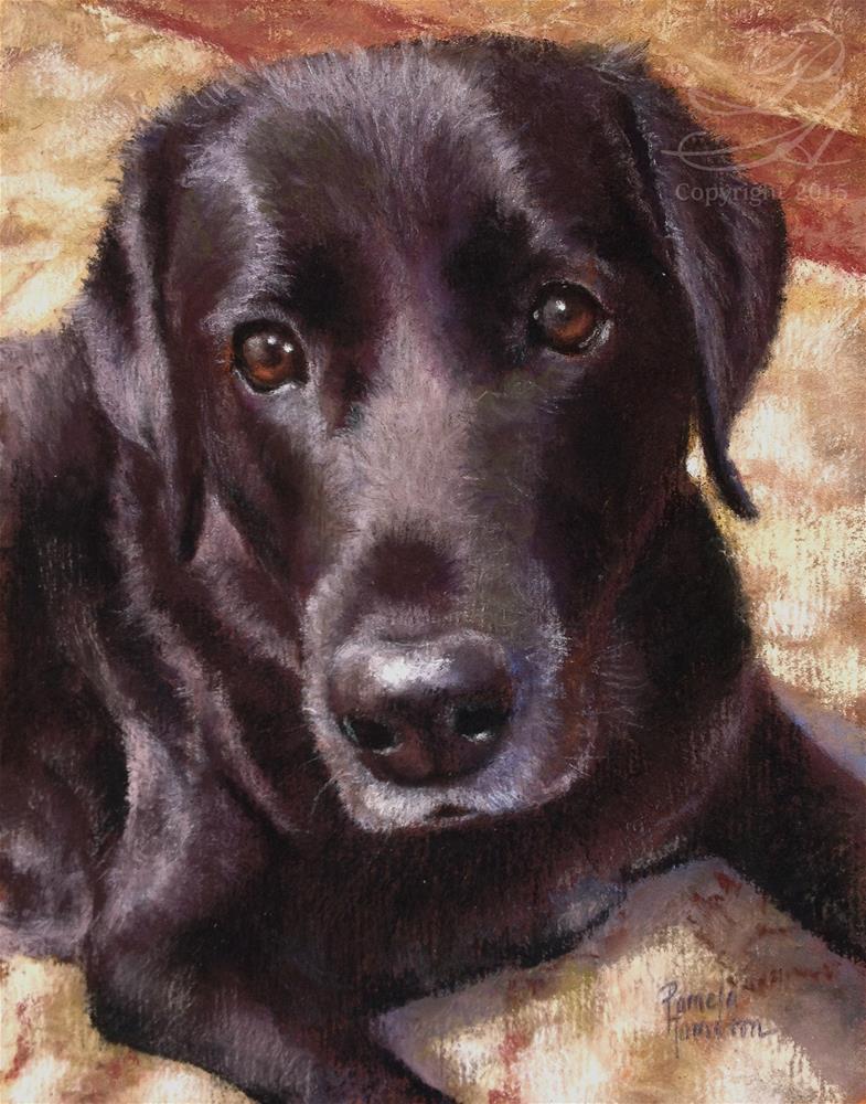 """Riley"" original fine art by Pamela Hamilton"