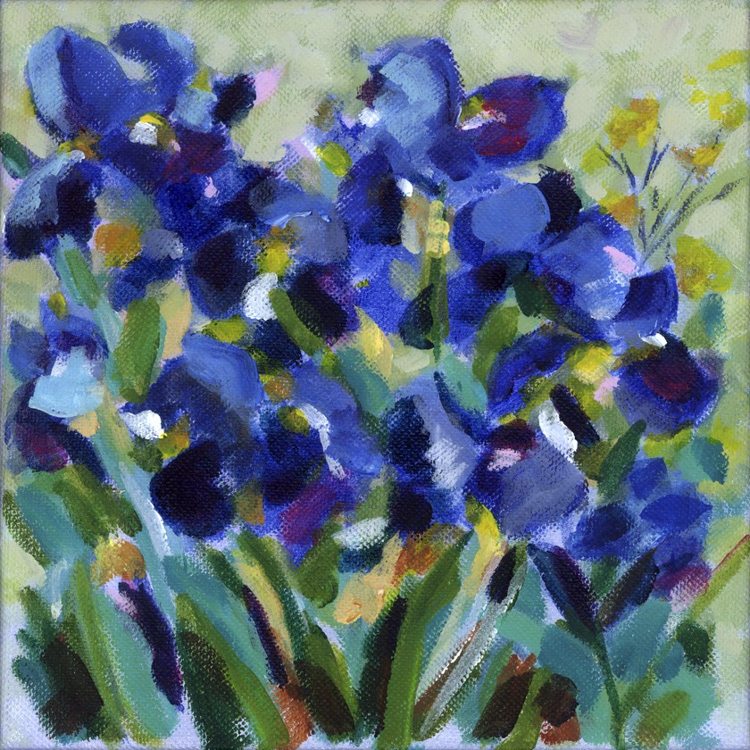 """Blue Iris Waltz"" original fine art by Pamela Gatens"