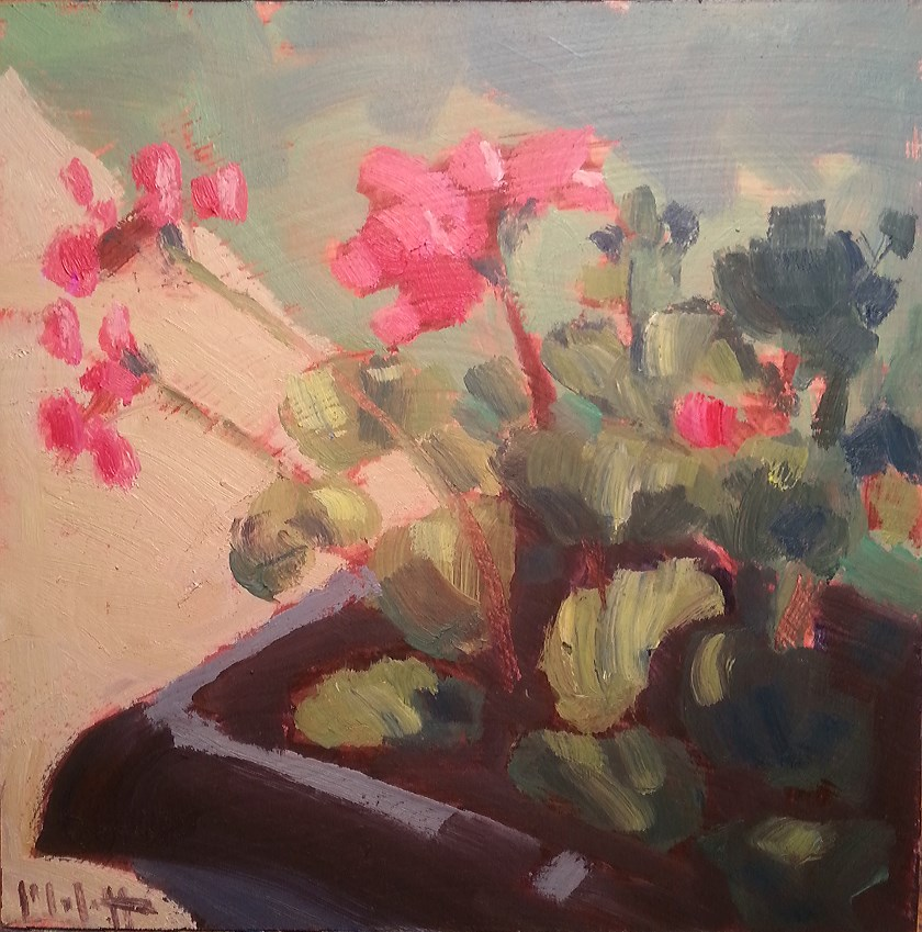 """Geraniums Floral Oil Painting"" original fine art by Heidi Malott"