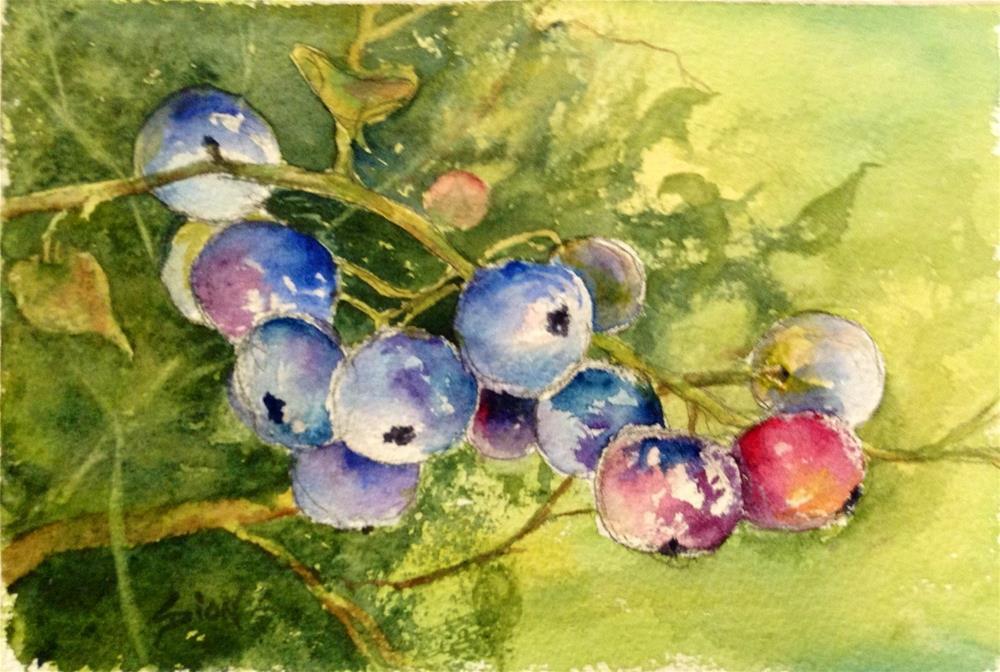 """Blueberry Season"" original fine art by Sue Dion"