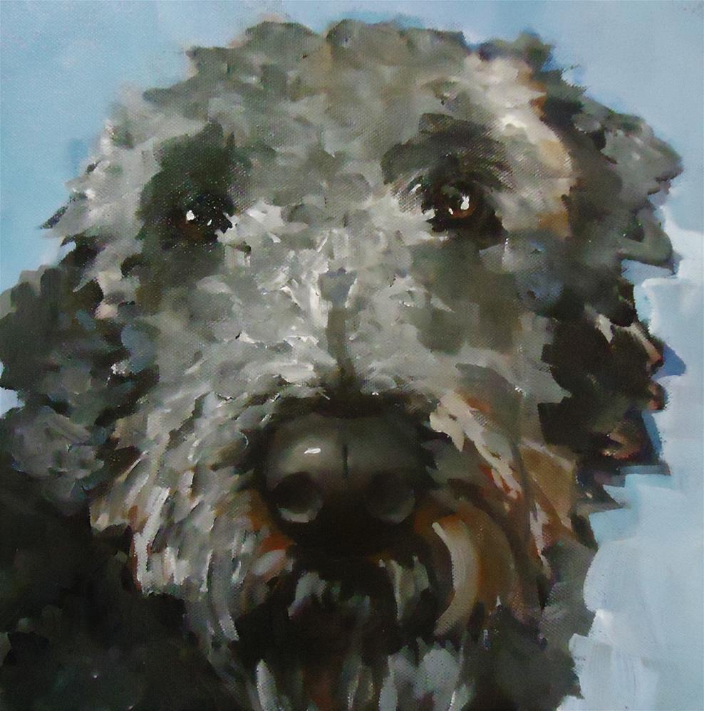 """Griff"" original fine art by Laurie Mueller"