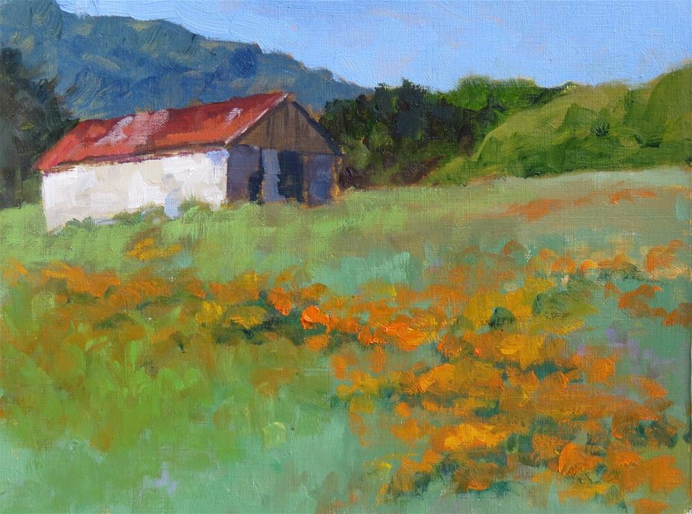 """Hillside Of Poppies"" original fine art by Pam Holnback"
