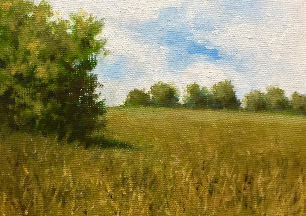 """Summer Landscape (Lincoln, MA)"" original fine art by Michelle Garro"