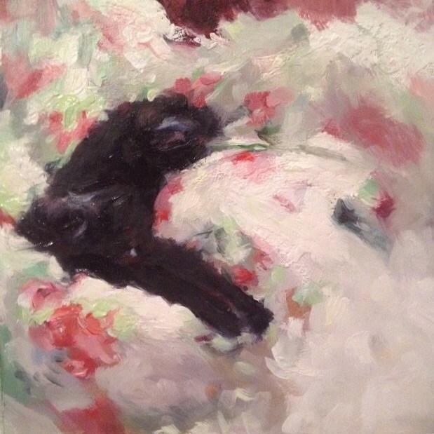 """Pushka Asleep"" original fine art by Paula Howson-Green"