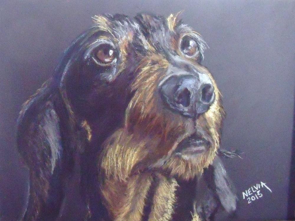 """""""What!!! I'm a Dog??"""" original fine art by Nelvia  McGrath"""