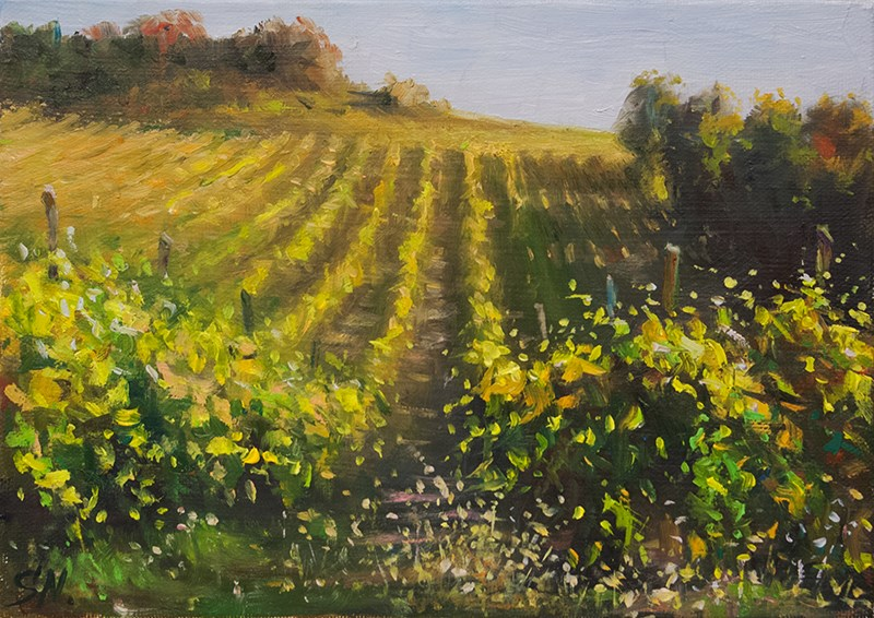 """Hillside vineyard # 2 Tuscany Sunset"" original fine art by Nick Sarazan"