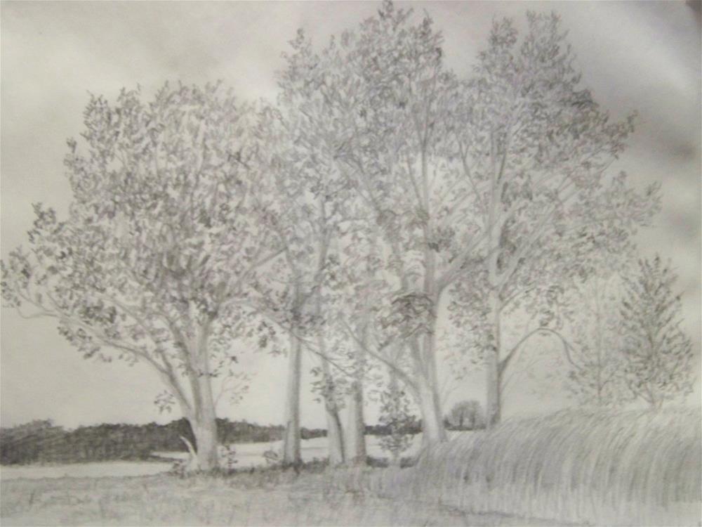 """Octoberfarm Trees #1"" original fine art by Elaine Shortall"
