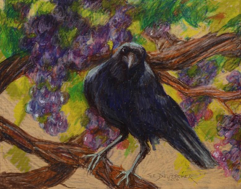 """""""Crow and Grapes"""" original fine art by Sue Deutscher"""