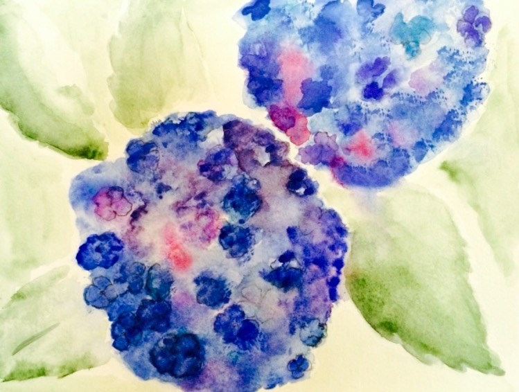 """""""Hydrangeas #5   6 x 8  Watercolor / ink"""" original fine art by Nancy Beard"""