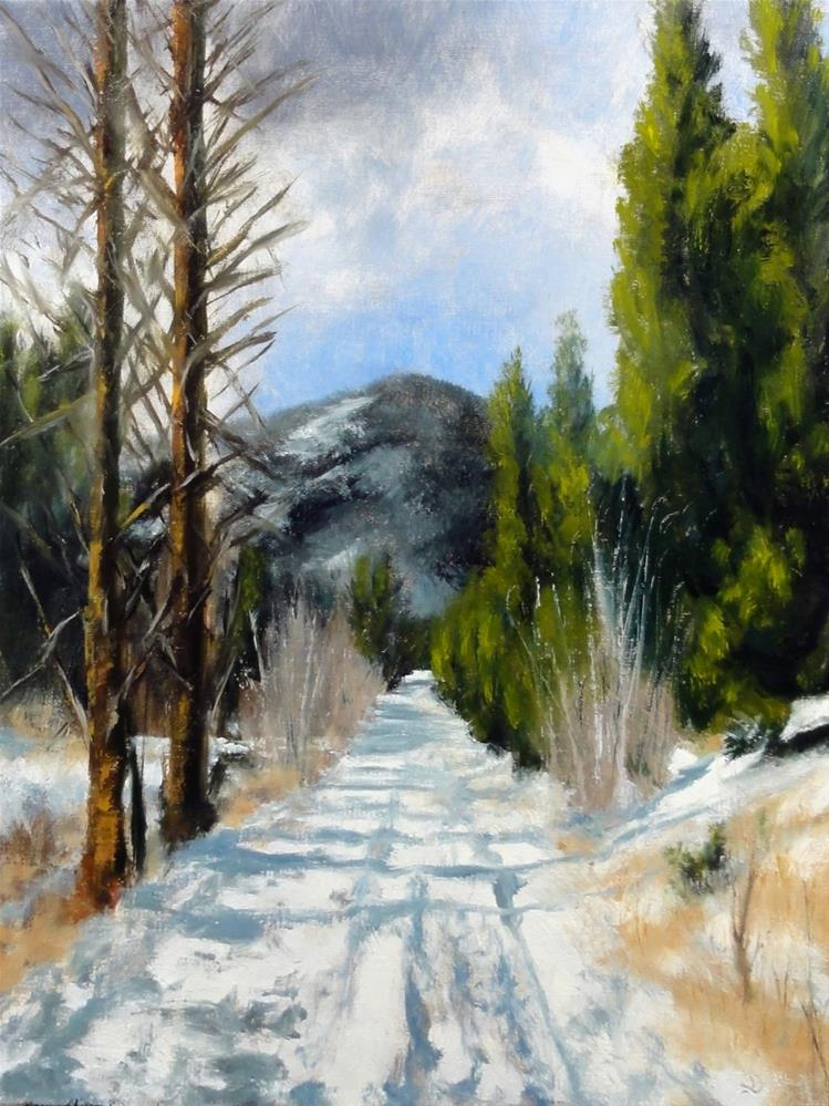 """Rocky Mountain Winter"" original fine art by Dalan Wells"