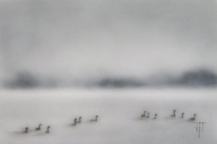 """Geese on the Lake"" original fine art by Terri Heinrichs"