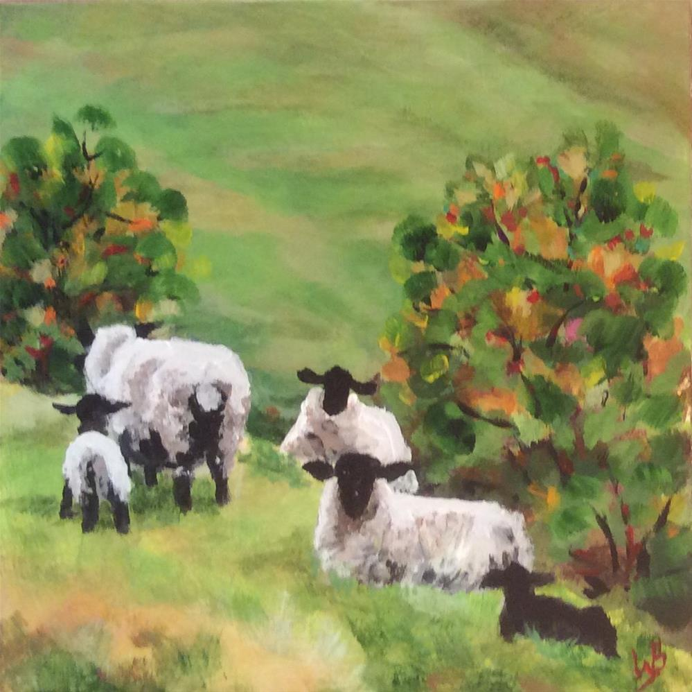 """sheep in meadow"" original fine art by wendy black"