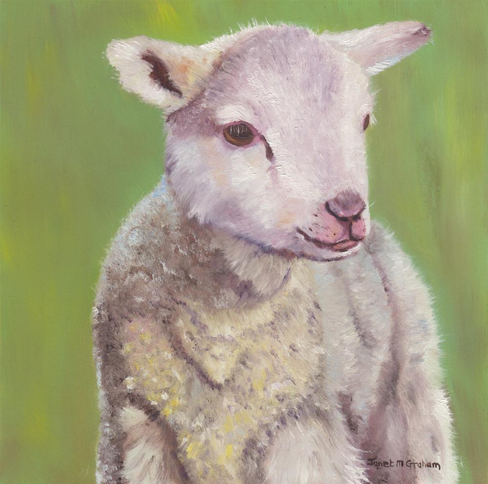 """Spring Lamb"" original fine art by Janet Graham"