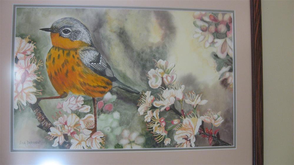"""Wood Warbleror on Apple Blossom"" original fine art by Lisa Darrow"