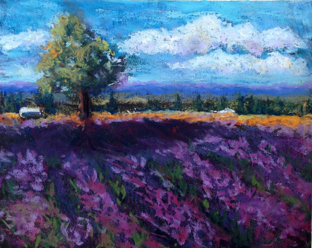 """Lavendar Fields"" original fine art by Kristen Dukat"