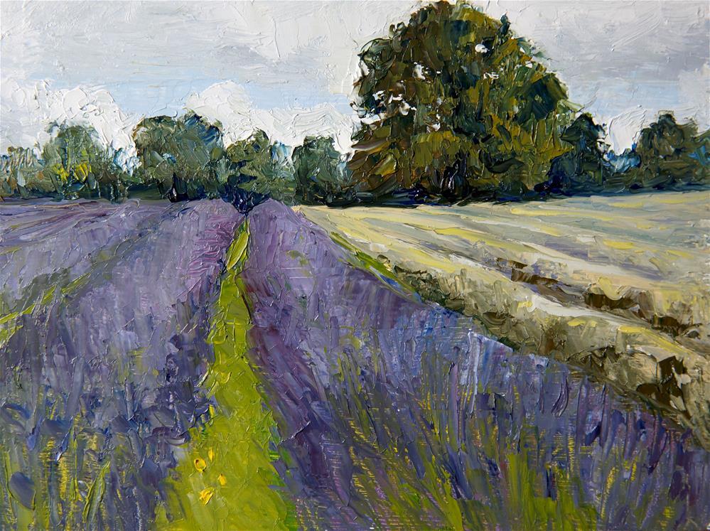 """Lavender Harvest"" original fine art by Jethro Knight"