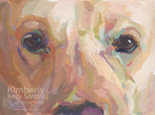 """Webster"" original fine art by Kimberly Santini"