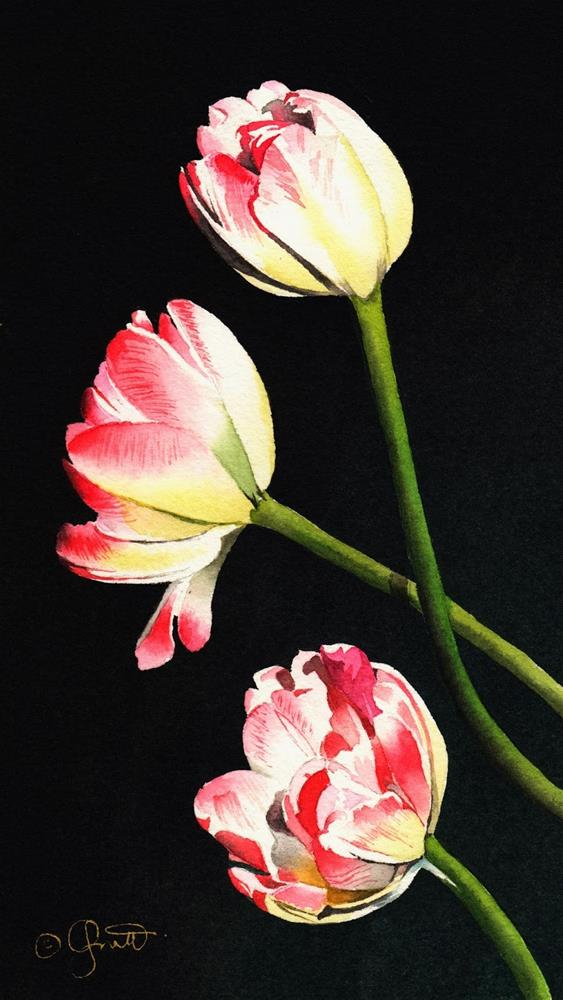 """Three Tulips and St. Patricks Day"" original fine art by Jacqueline Gnott, whs"